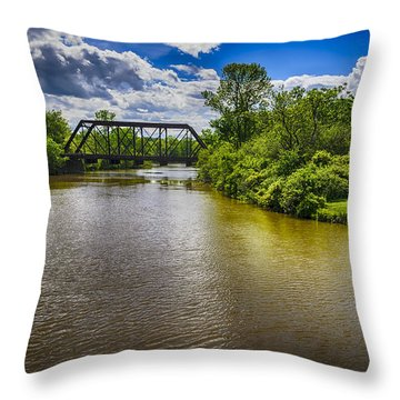 Royal River Throw Pillow
