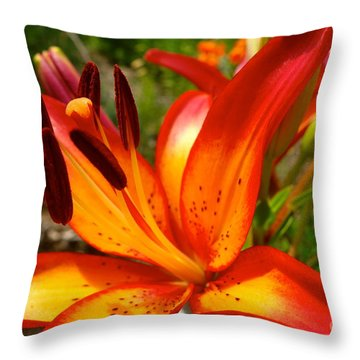 Royal Sunset Lily Throw Pillow by Jacqueline Athmann