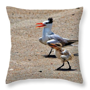 Royal Tern With Chick Throw Pillow
