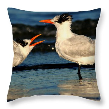 Royal Tern Courtship Dance Throw Pillow