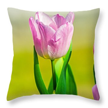 Throw Pillow featuring the photograph Royalty Delight by Ken Stanback