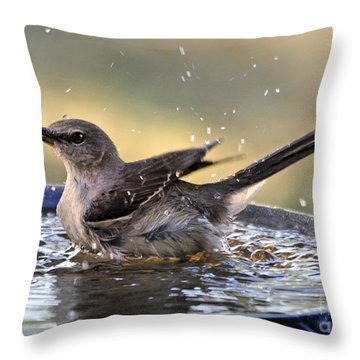 Throw Pillow featuring the photograph Rub-a-dub-dub Mockingbird by Nava Thompson