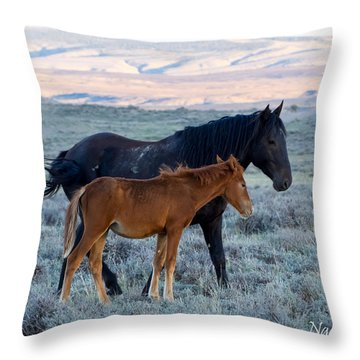 Ruby And Coal Of Sand Wash Basin Throw Pillow