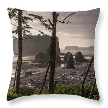 Ruby Beach Throw Pillow