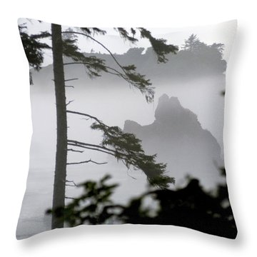 Ruby Beach Washington State Throw Pillow