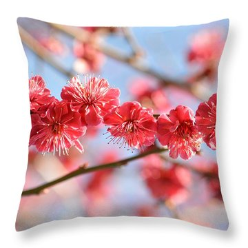 Ruby Studded Throw Pillow