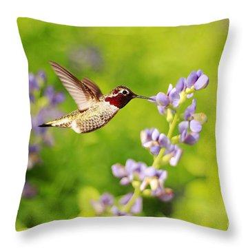 Ruby Throated Hummingbird Throw Pillow by Darren Fisher