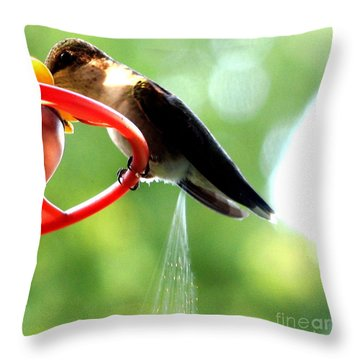 Throw Pillow featuring the photograph Ruby-throated Hummingbird Pooping by Rose Santuci-Sofranko