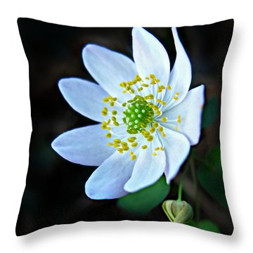 Rue Anemone Throw Pillow by William Tanneberger