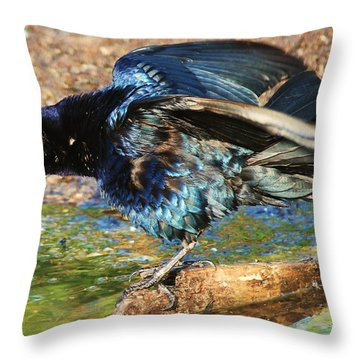 Ruffle My Feathers Throw Pillow by Lorri Crossno