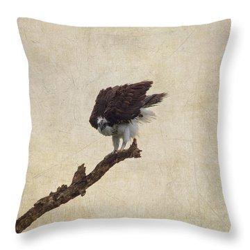 Ruffled Up Osprey Throw Pillow by Kim Hojnacki