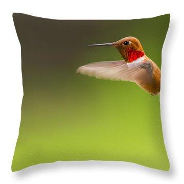 Rufous Hummingbird Male Throw Pillow