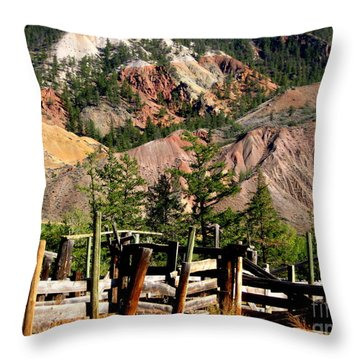 Throw Pillow featuring the photograph Rugged Beauty by Kathy Bassett