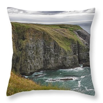 Rugged Landscape Throw Pillow by Eunice Gibb