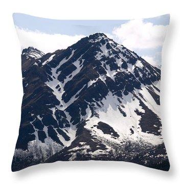 Rugged  Throw Pillow by Tara Lynn