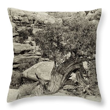 Rugged Tree Throw Pillow