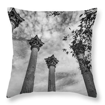 Ruins Of Windsor In Southwest Mississippi Throw Pillow