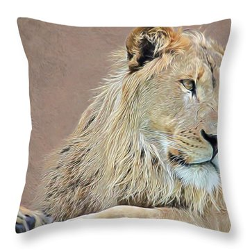 Throw Pillow featuring the photograph Ruling The Roost by Diane Alexander