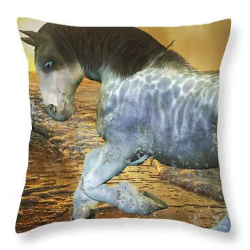 Run With Me Sunrise Throw Pillow