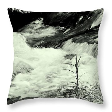 Runneth Over Throw Pillow by Tami Quigley