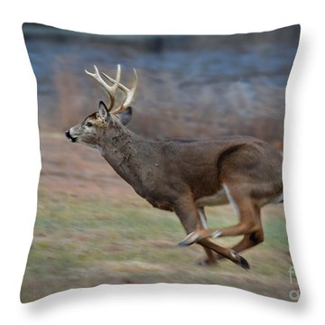 Running Buck Throw Pillow