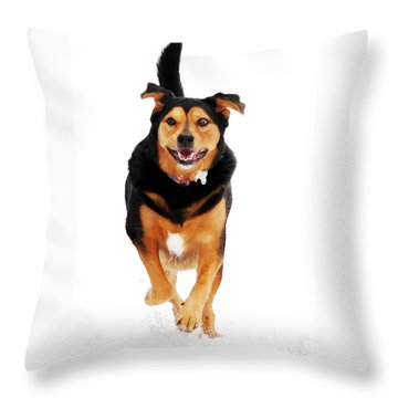Running Dog Art Throw Pillow by Christina Rollo