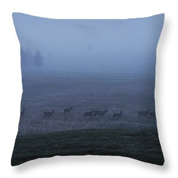 Running In The Mist Throw Pillow
