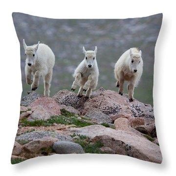 Running Scared Throw Pillow