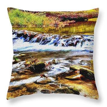 Running Stream In Yosemite National Park Throw Pillow by Bob and Nadine Johnston