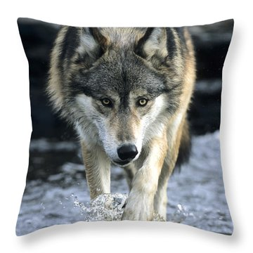 Running Wolf Throw Pillow