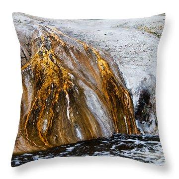 Runoff From Geyser Throw Pillow by Dan Hartford