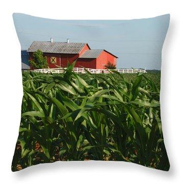 Rural Art Throw Pillow by Janice Adomeit