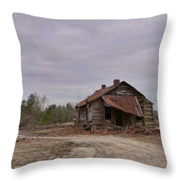 Put Out By The Roadside Throw Pillow