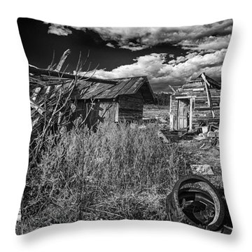 Rural Decay Throw Pillow by Alan Raasch