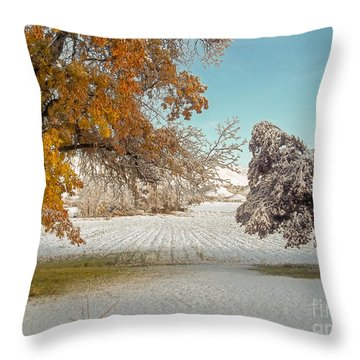 Rural Early Snow In Western Colorado  Throw Pillow