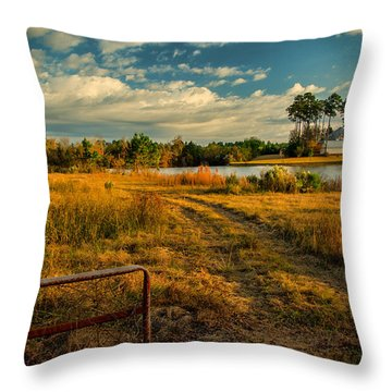 Rural Georgia  Throw Pillow