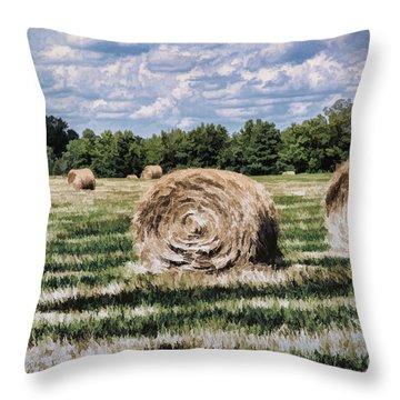 Throw Pillow featuring the painting Rural Georgia by Linda Blair