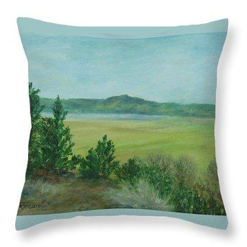 Rural Landscape Art Original Colorful Oil Painting Swan Lake Oregon  Throw Pillow