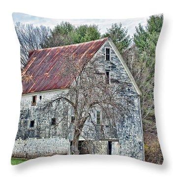 Rural Maine Delight Throw Pillow by Richard Bean