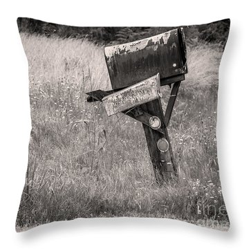 Rural Route Mail Call  Throw Pillow