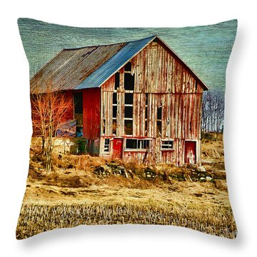 Rural Rustic Vermont Scene Throw Pillow by Deborah Benoit