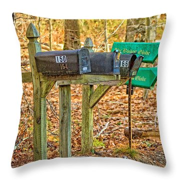Throw Pillow featuring the photograph Rural Stanchions by Constantine Gregory
