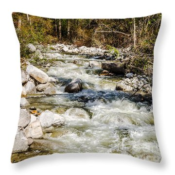 Rushing Water Throw Pillow by Sue Smith