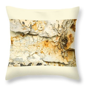 Rust And Peeling Paint Throw Pillow