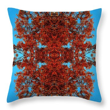 Throw Pillow featuring the photograph Rust And Sky 4 - Abstract Art Photo by Marianne Dow
