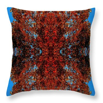 Throw Pillow featuring the photograph Rust And Sky 5 - Abstract Art Photo by Marianne Dow