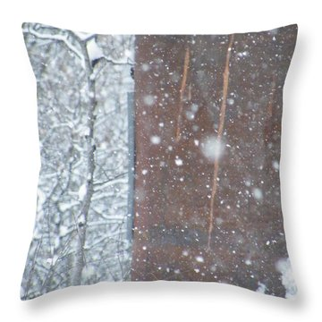 Rust Not Sleeping In The Snow Throw Pillow by Brian Boyle
