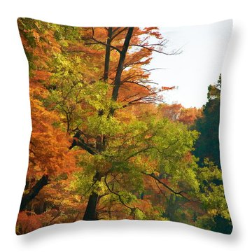 Rustic Autumn Throw Pillow by Lana Trussell