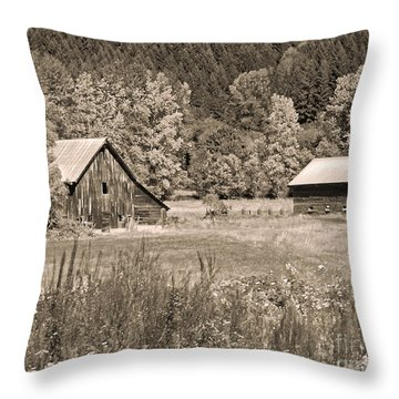 Rustic Beauty In Sepia Throw Pillow by Connie Fox