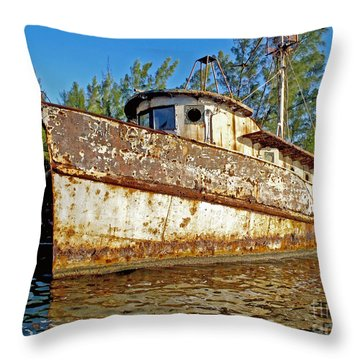 Rustic Throw Pillow by Carey Chen